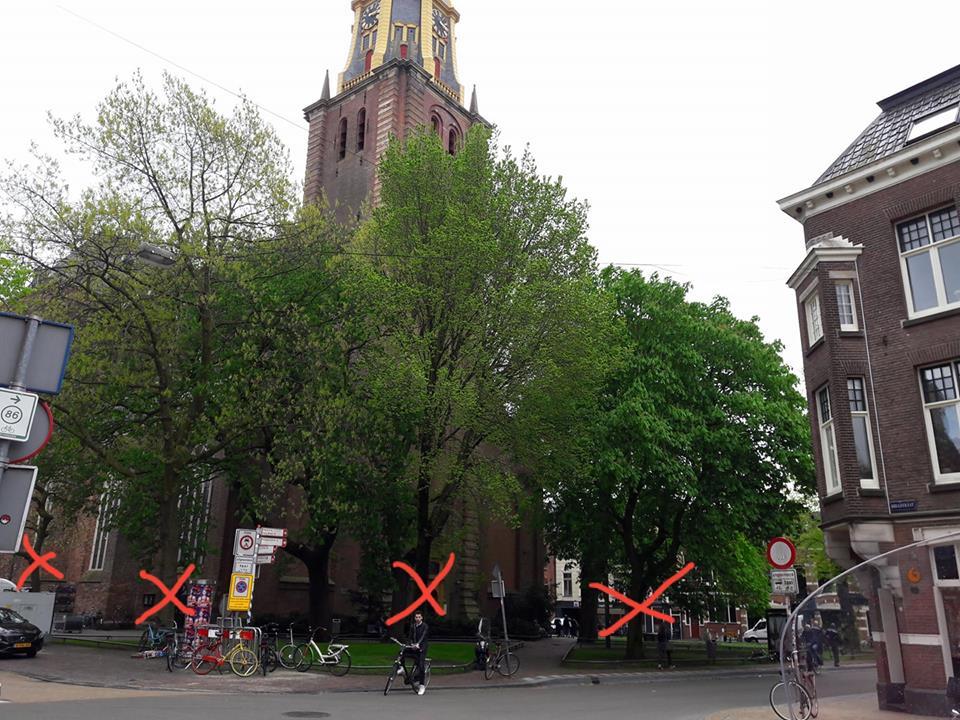 Zitting Rechtbank – Bomenkap plantsoen A-Kerk Groningen?