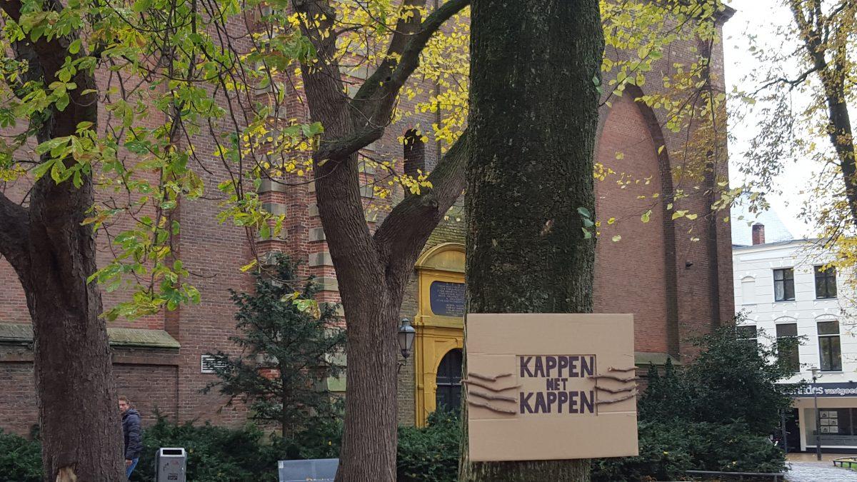 Rechtszaak bomen Akerkhof dient donderdag 12 december 2019