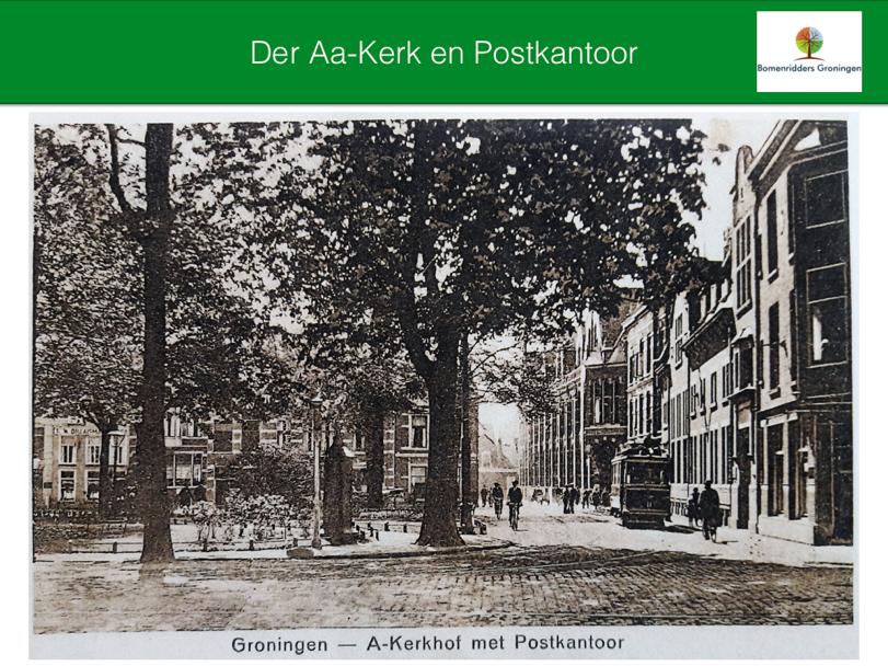 Uitspraak bomenkap Akerkhof bekend