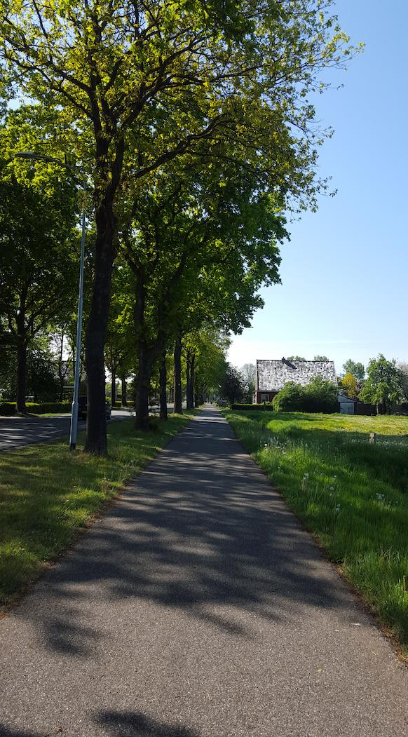 Mogelijke bomenkap van 35 tot 182 bomen naast de N386 en fietspad in Kropswolde tot de Groeve