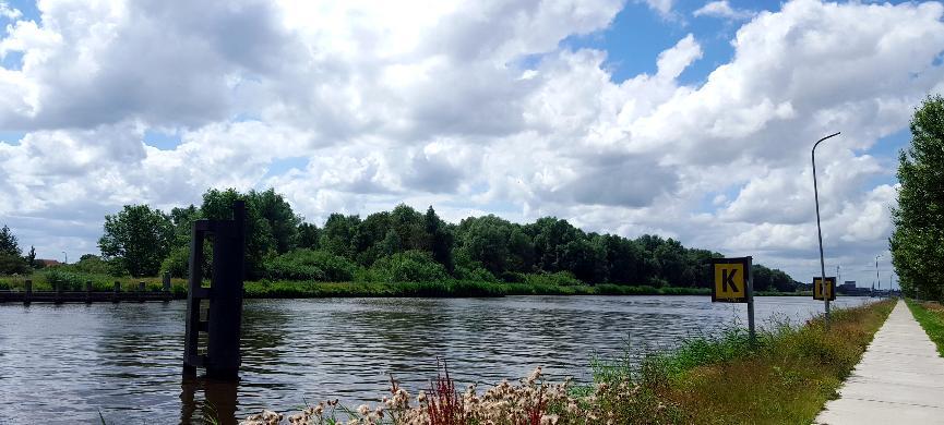 Voorbeeld brief voor de gemeente om de Eemskanaalzone Bos te beschermen